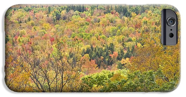 Maine Mountains iPhone Cases - Autumn Forest Mount Blue State Park Weld Maine iPhone Case by Keith Webber Jr