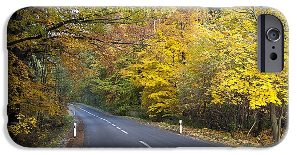 Asphalt iPhone Cases - Autumn Forest Road iPhone Case by Michal Boubin