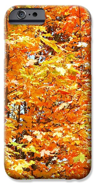 Fury iPhone Cases - Autumn Fury iPhone Case by Chalet Roome-Rigdon
