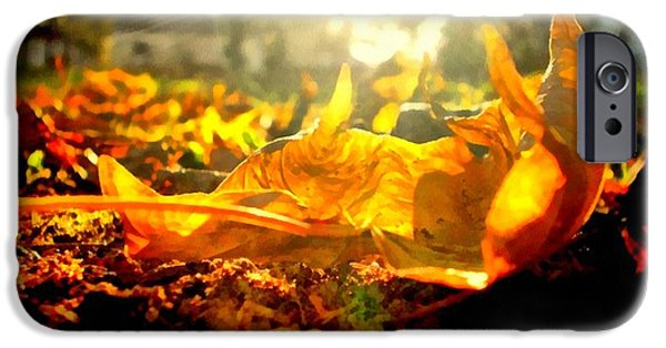 Rural Decay Digital Art iPhone Cases - Autumn glory iPhone Case by Janine Riley