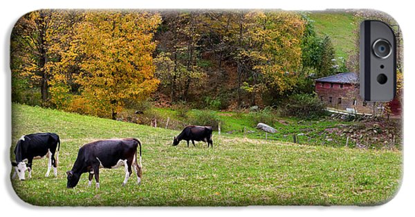 New England Dairy Farms iPhone Cases - Autumn Graze iPhone Case by Bill  Wakeley