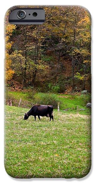 Autumn Graze iPhone Case by Bill  Wakeley