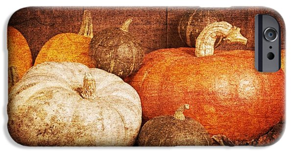 Gourd iPhone Cases - Autumn Harvest Textured iPhone Case by Edward Fielding