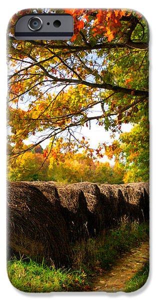 Autumn Hay Bales Blue Ridge Mountains II iPhone Case by Dan Carmichael