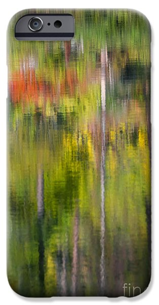 Impression iPhone Cases - Autumn Impressions iPhone Case by Mike  Dawson