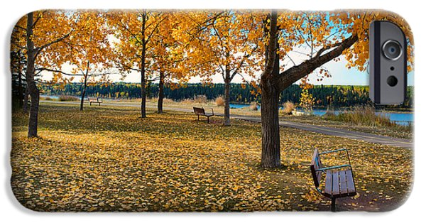 Autumn In Calgary iPhone Case by Trever Miller