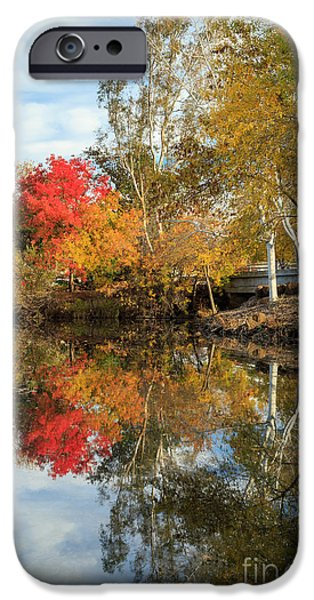 Chico iPhone Cases - Autumn In Chico iPhone Case by James Eddy