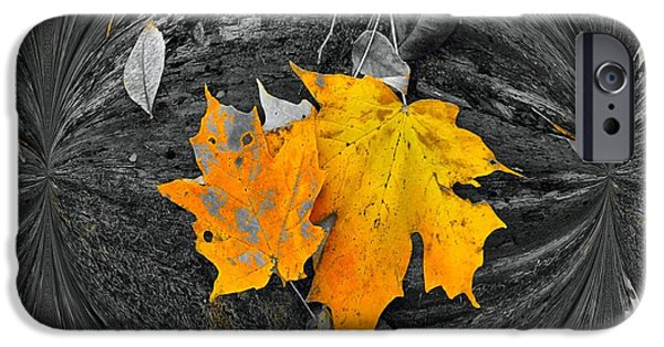 Selective Coloring Art iPhone Cases - Autumn In Color iPhone Case by Dan Sproul