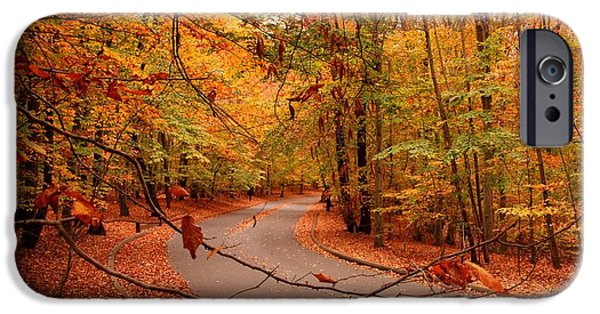 Scenic Drive iPhone Cases - Autumn In Holmdel Park iPhone Case by Angie Tirado