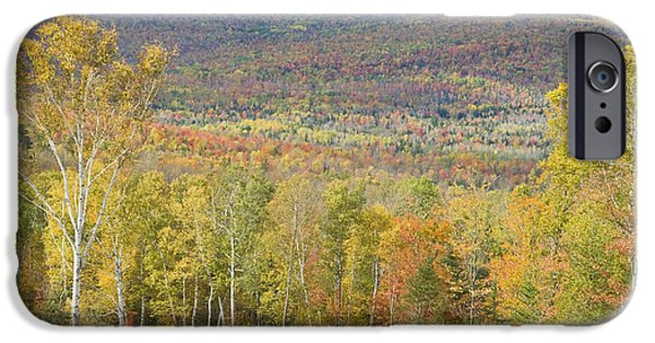Maine Mountains iPhone Cases - Autumn In Mount Blue State Park Weld Maine iPhone Case by Keith Webber Jr