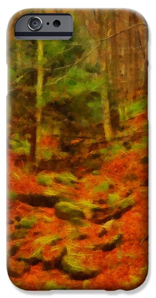 Pathway Mixed Media iPhone Cases - Autumn In Sproul State Forest iPhone Case by Dan Sproul