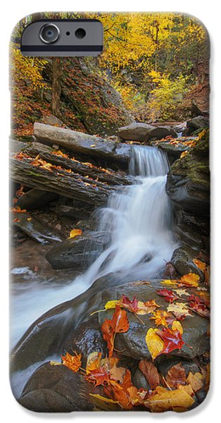 Upstate New York iPhone Cases - Autumn In The Catskills iPhone Case by Rick Berk
