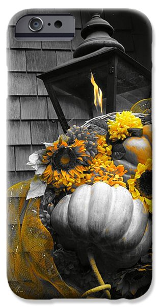 Autumn In The Country iPhone Cases - Autumn In The City iPhone Case by Dan Sproul