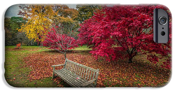 Bush Digital Art iPhone Cases - Autumn in the Park iPhone Case by Adrian Evans