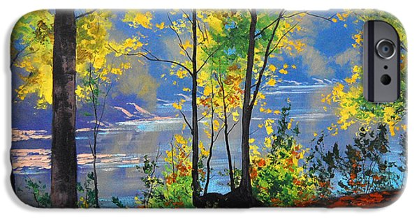 River iPhone Cases - Autumn in Tumut iPhone Case by Graham Gercken