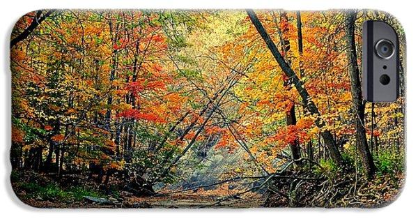 Stellar iPhone Cases - Autumn in Wonderland iPhone Case by Frozen in Time Fine Art Photography