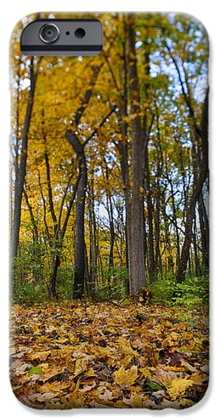 Walls iPhone Cases - Autumn is Here iPhone Case by Sebastian Musial