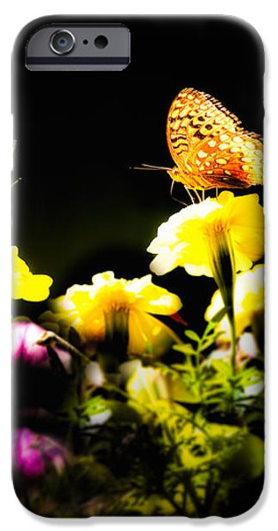Autumn is when we first met iPhone Case by Bob Orsillo