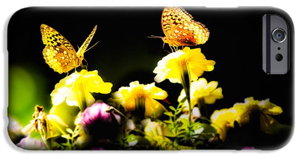 Flower Gardens Photographs iPhone Cases - Autumn is when we first met iPhone Case by Bob Orsillo