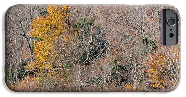 Panoramic Pyrography iPhone Cases - Autumn Landscape iPhone Case by Jacqueline Milner