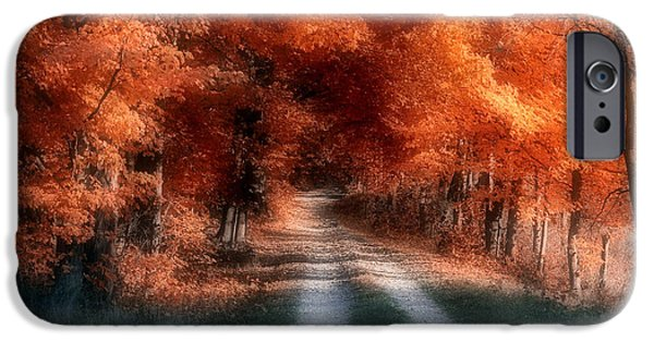 Country Dirt Roads iPhone Cases - Autumn Lane iPhone Case by Tom Mc Nemar