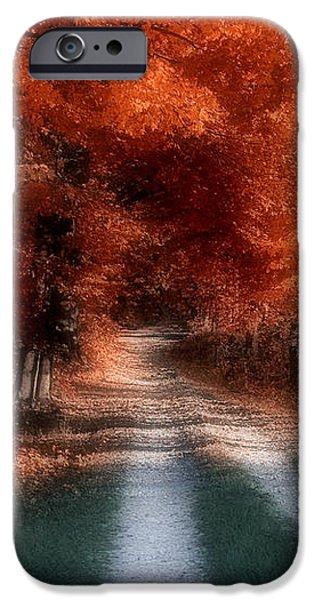Autumn Lane iPhone Case by Tom Mc Nemar