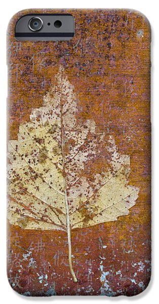 Photomontage iPhone Cases - Autumn Leaf on Copper iPhone Case by Carol Leigh