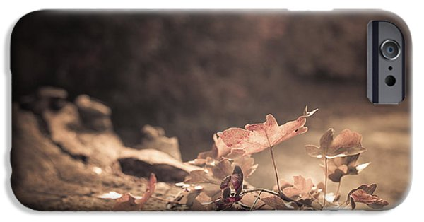 Autumn Scenes iPhone Cases - Autumn Leaves iPhone Case by Amanda And Christopher Elwell
