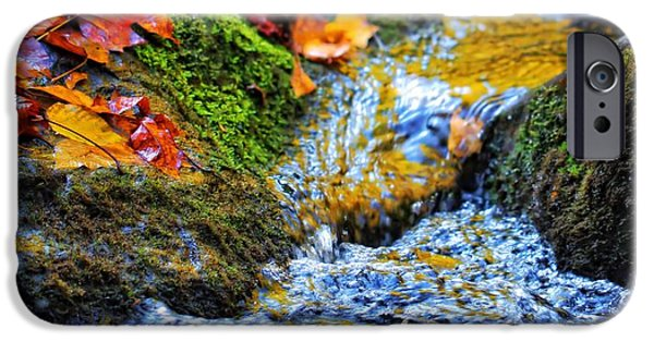 Colors Of Autumn iPhone Cases - Autumn Leaves In Water iPhone Case by Dan Sproul