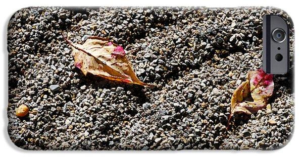 Rake iPhone Cases - Autumn Leaves in Zen Garden iPhone Case by Nancy Mueller