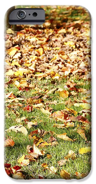 Fall Grass iPhone Cases - Autumn leaves iPhone Case by Les Cunliffe