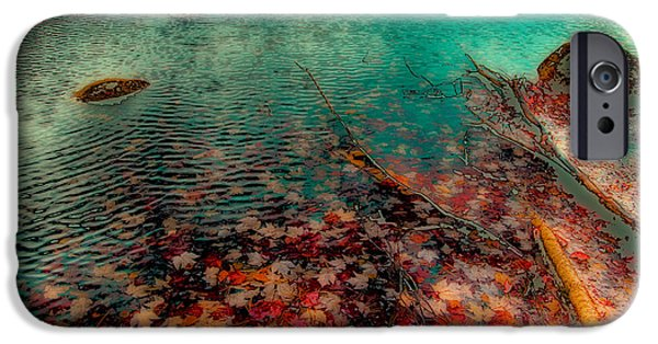Surreal Landscape iPhone Cases - Autumn Leaves on Cary Lake - Abstract iPhone Case by David Patterson