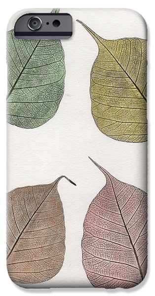 Snake Reliefs iPhone Cases - Autumn Leavs iPhone Case by Suzette Broad