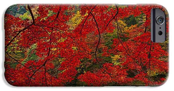 Kyoto iPhone Cases - Autumn Love iPhone Case by Midori Chan