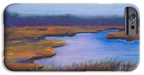 Cape Cod Pastels iPhone Cases - Autumn Marsh iPhone Case by Claire Norris
