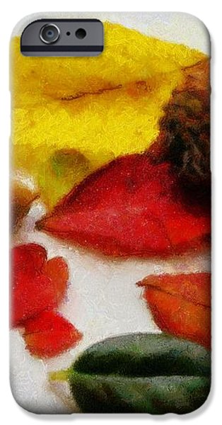 Autumn Medley iPhone Case by Jeff Kolker