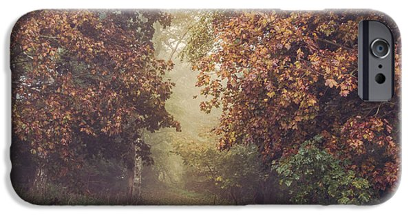 Fletcher iPhone Cases - Autumn mist in a woodland glade iPhone Case by Chris Fletcher