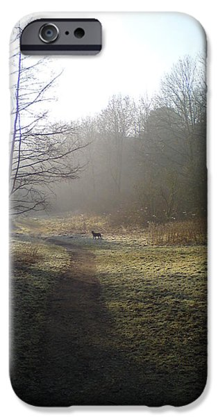 Autumn Photographs iPhone Cases - Autumn Morning 4 iPhone Case by David Stribbling