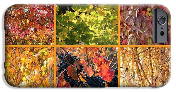 Colors Of Autumn iPhone Cases - Autumn Nature Collage iPhone Case by Carol Groenen