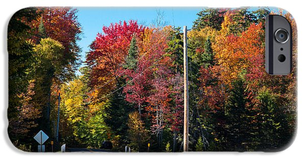 Autumn In The Country iPhone Cases - Autumn on Rondaxe Road iPhone Case by David Patterson