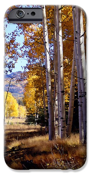 Recent iPhone Cases - Autumn Paint Chama New Mexico iPhone Case by Kurt Van Wagner