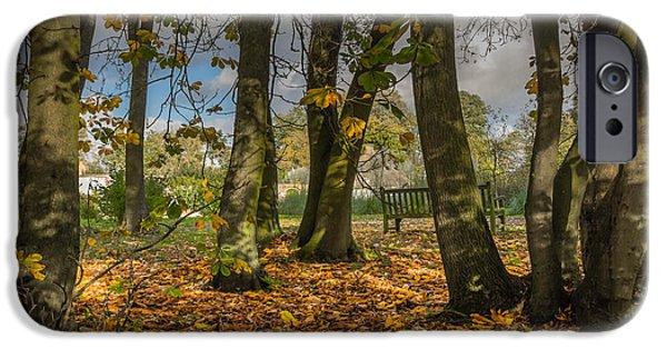 Autumn iPhone Cases - Autumn parkland iPhone Case by Chris Fletcher