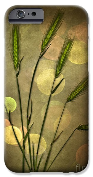 Fall Grass iPhone Cases - Autumn Party iPhone Case by Jan Bickerton