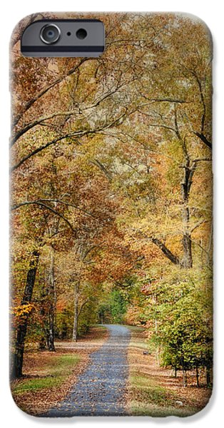 Fall Scenes iPhone Cases - Autumn Passage 2 - Fall Landscape Scene iPhone Case by Jai Johnson