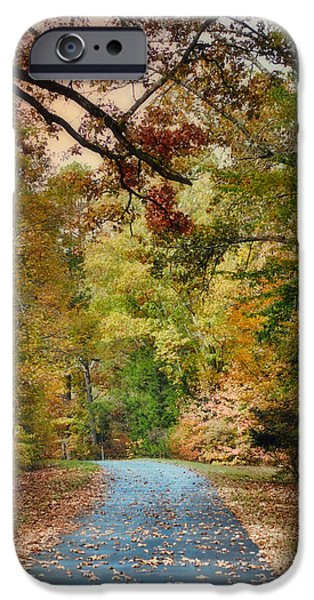 Fall Scenes iPhone Cases - Autumn Passage 3 - Fall Landscape Scene iPhone Case by Jai Johnson