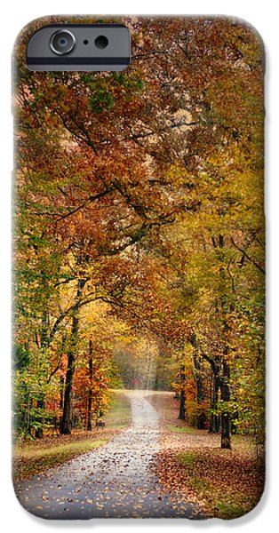 Autumn Scenes iPhone Cases - Autumn Passage 4 - Fall Landscape Scene iPhone Case by Jai Johnson