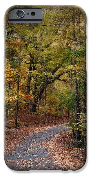 Autumn Scenes iPhone Cases - Autumn Passage 5 - Fall Landscape Scene iPhone Case by Jai Johnson