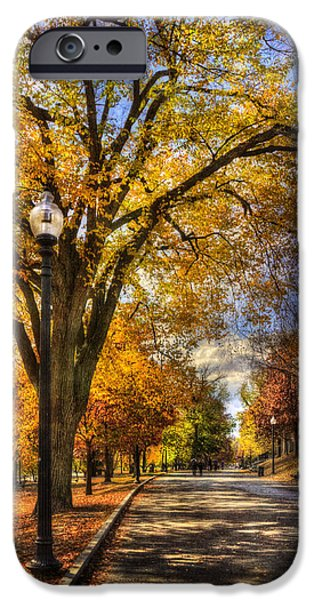 Massachusetts Autumn Scenes iPhone Cases - Autumn Path - Boston Public Garden iPhone Case by Joann Vitali