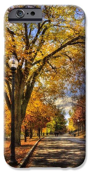 Fall Scenes iPhone Cases - Autumn Path - Boston Public Garden iPhone Case by Joann Vitali