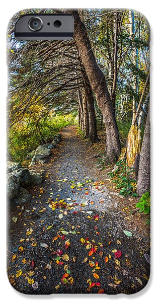 Autumn iPhone Cases - Autumn Path Manuals Trail iPhone Case by Gord Follett
